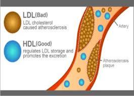 menurunkan kadar kolestero dengan 7 makanan