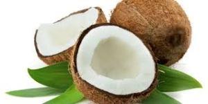 manfaat buah kelapa untuk tubuh anda