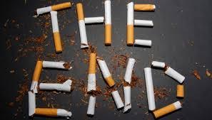 Merokok Dapat Merusak Empat Organ Ini